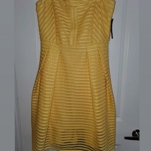 New/Never Worn Strapless Striped Mesh Dress